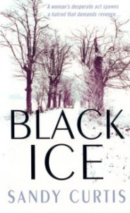 book2-bi-cover
