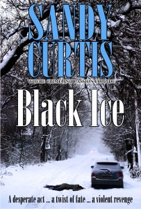 Black Ice eBook cover